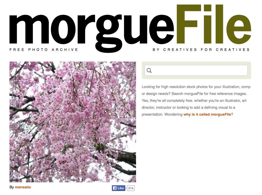 morguefile Imagem para blog: 20 Sites onde Você Pode Encontrar